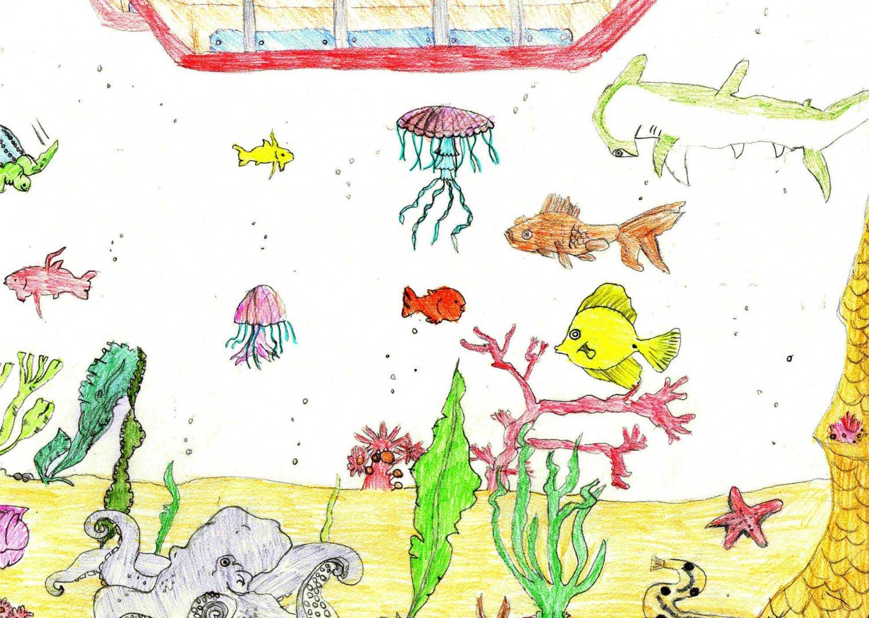 I vostri disegni pubblicati sul sito dei pulpi for Sito per disegnare